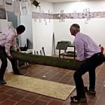Baum spalten Performance bitterernst